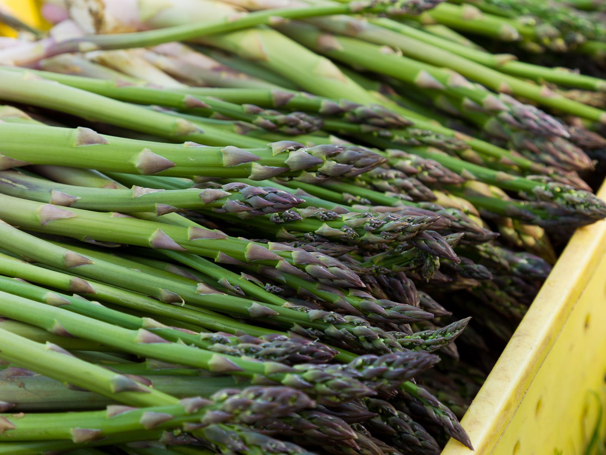 'NJ1113' Asparagus