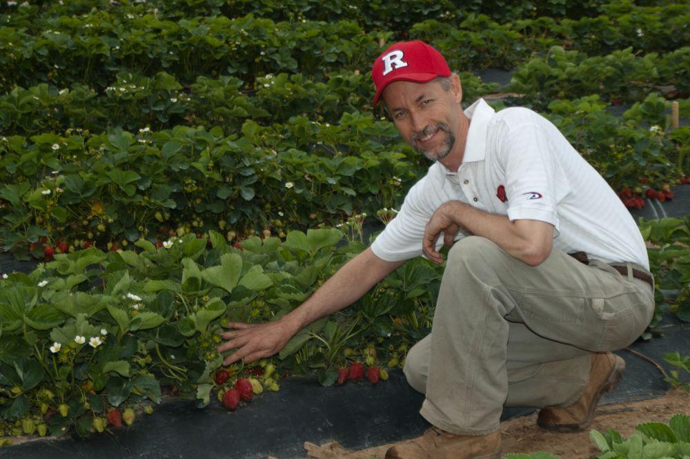 NItzsche strawberry selections-4