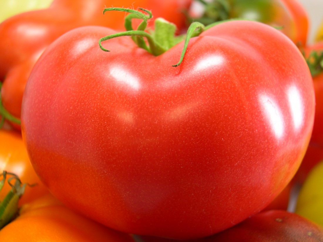 Nitzsche_Jersey-Grown-Red-Tomato-Cluster-1100x825