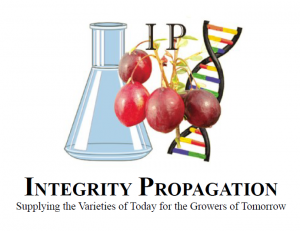integritypropagation